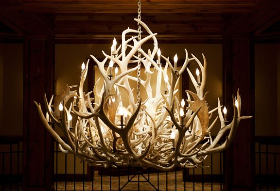 Antler chandeliers housewares furniture pinterest antlers antler chandeliers mozeypictures Choice Image
