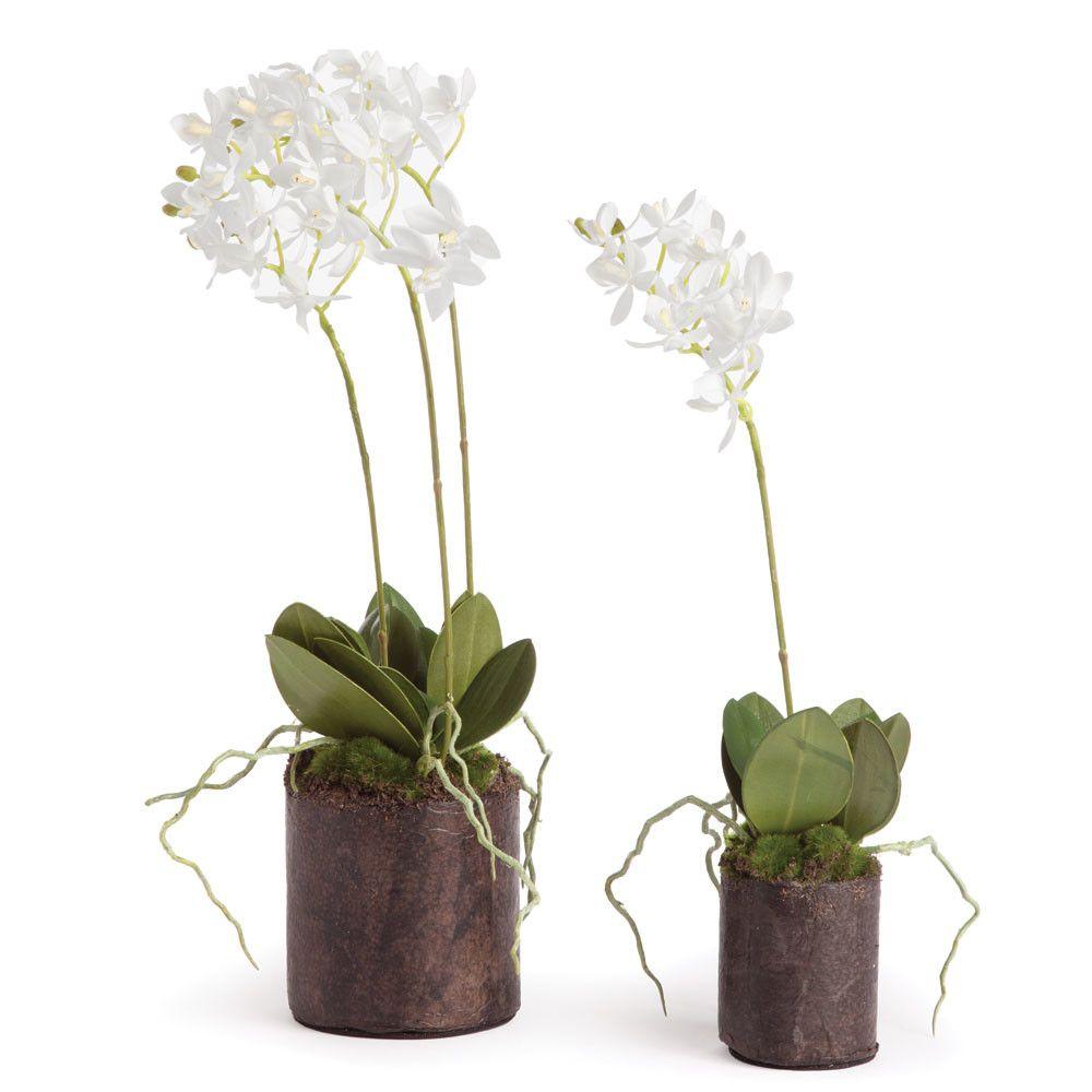 Napa Home and Garden Dendrobium 2 Piece Drop In Set (mit