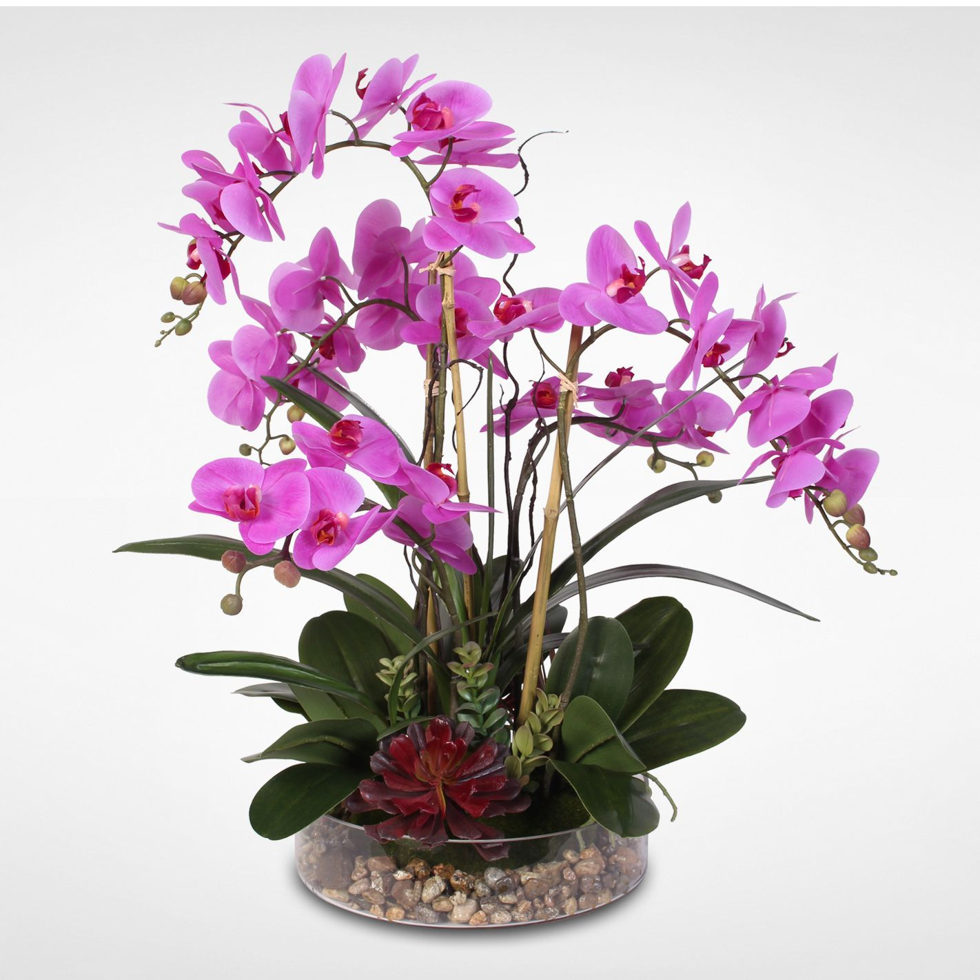 Real touch phalaenopsis orchid with succulents and rocks in glass