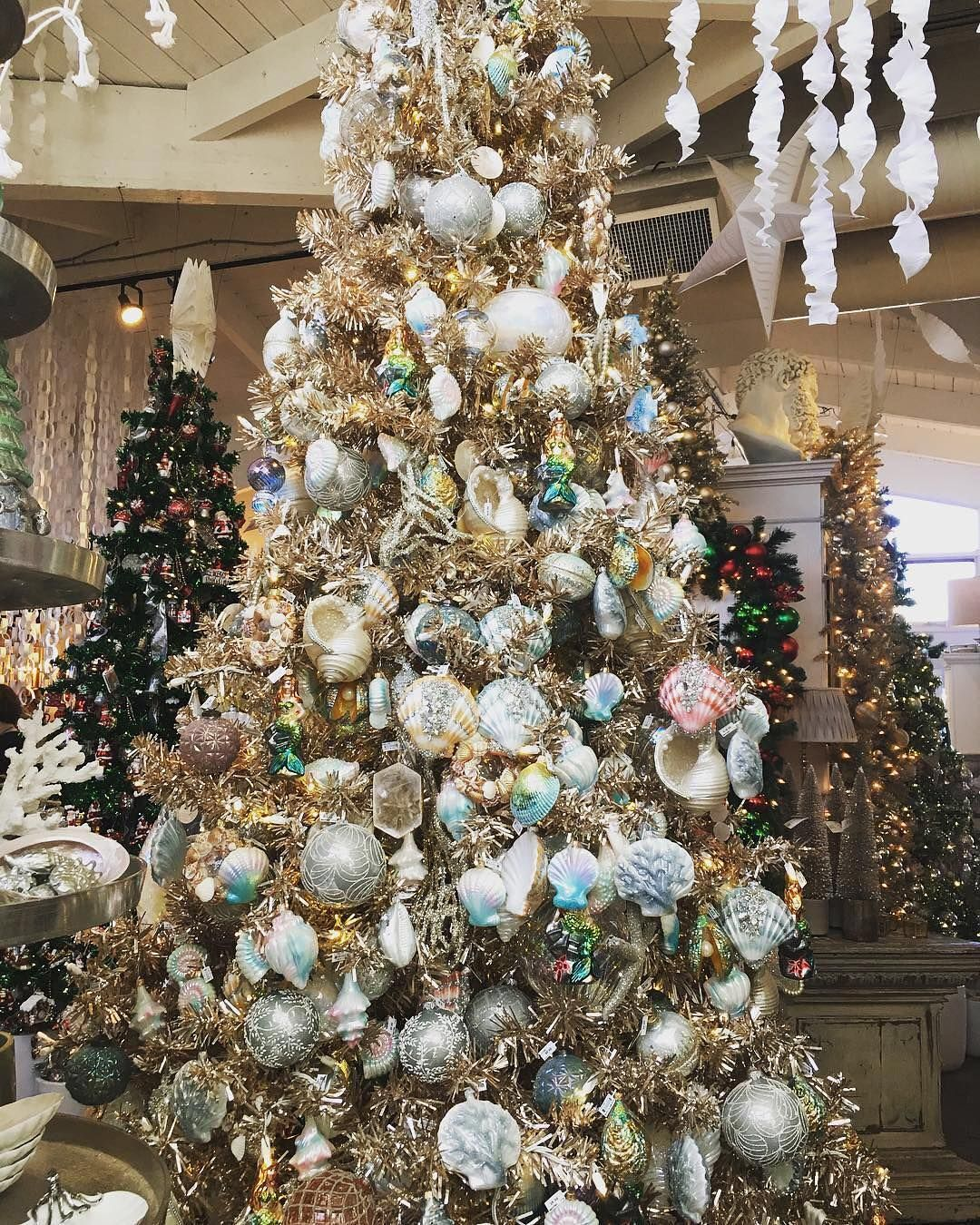 b274bc266ed5eab94a7d75947ab10c03 - When Does Rogers Gardens Decorated For Christmas