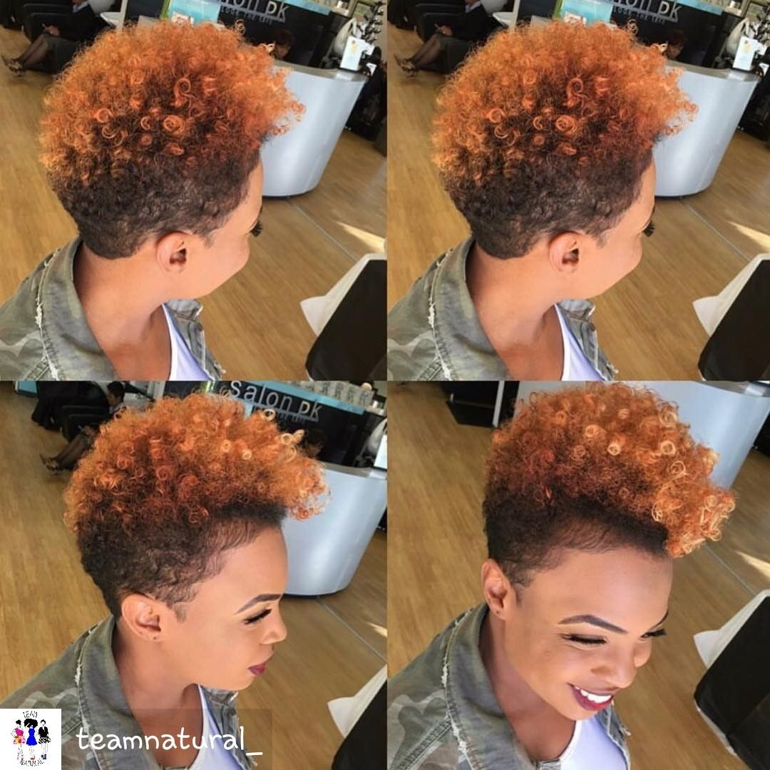 BLACK HAIRSTYLE IDEAS YOUuD LOVE  Natural Hair style and Short hair