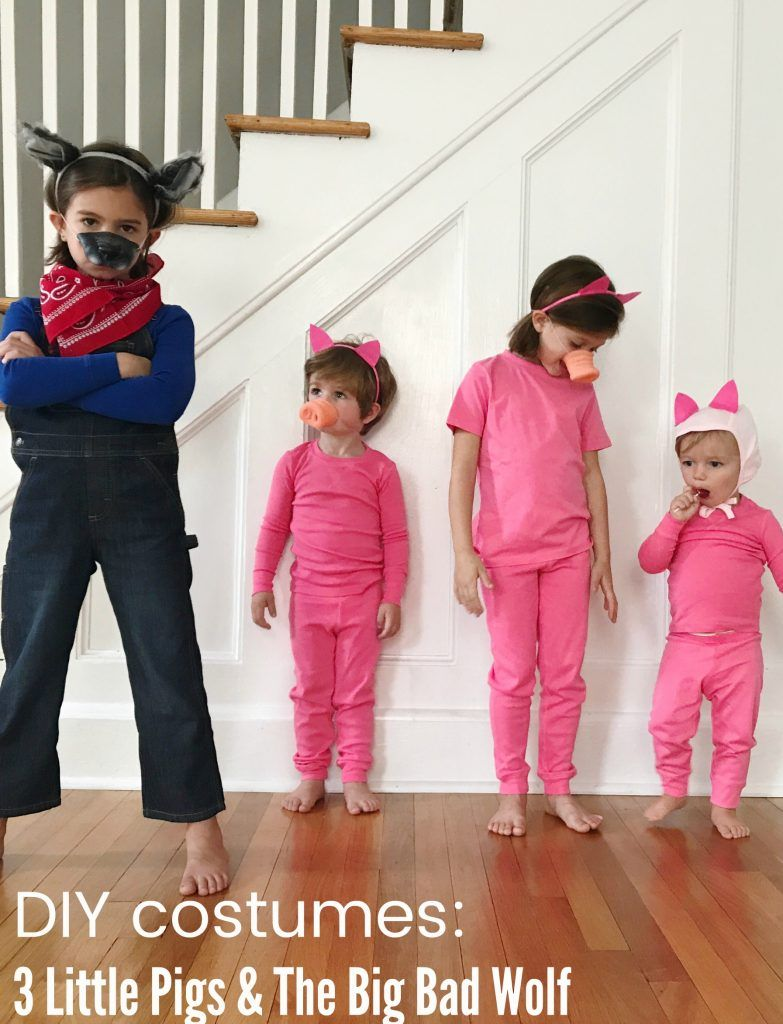 3 Easy Diy Storage Ideas For Small Kitchen: Easy DIY Group Costume: 3 Little Pigs And The Big Bad Wolf