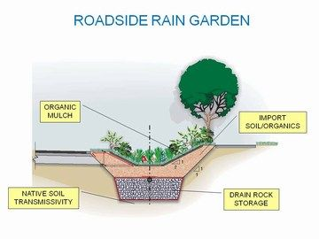 Roadside rain garden | Rain garden, Rain garden design ... on rain garden design for homeowners, rain garden design ideas, rain garden design software, native garden design diagrams, rain garden design templates, rain garden design calculations, rain garden planting design for maryland, landscaping diagrams, rain barrel diagram, sustainable architecture design diagrams, rain garden design sketch, rain architecture diagrams, rain water retention plans, catch rain diagrams, rain shadow, stormwater management diagrams,