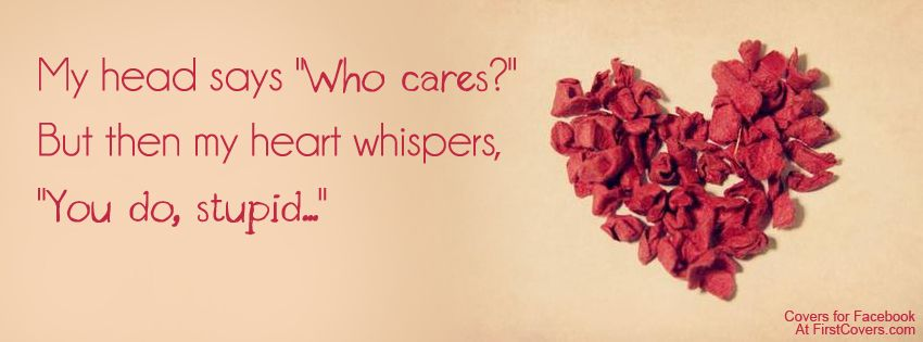 You do, stupid.... Quotes! Heart quotes, Wonder quotes