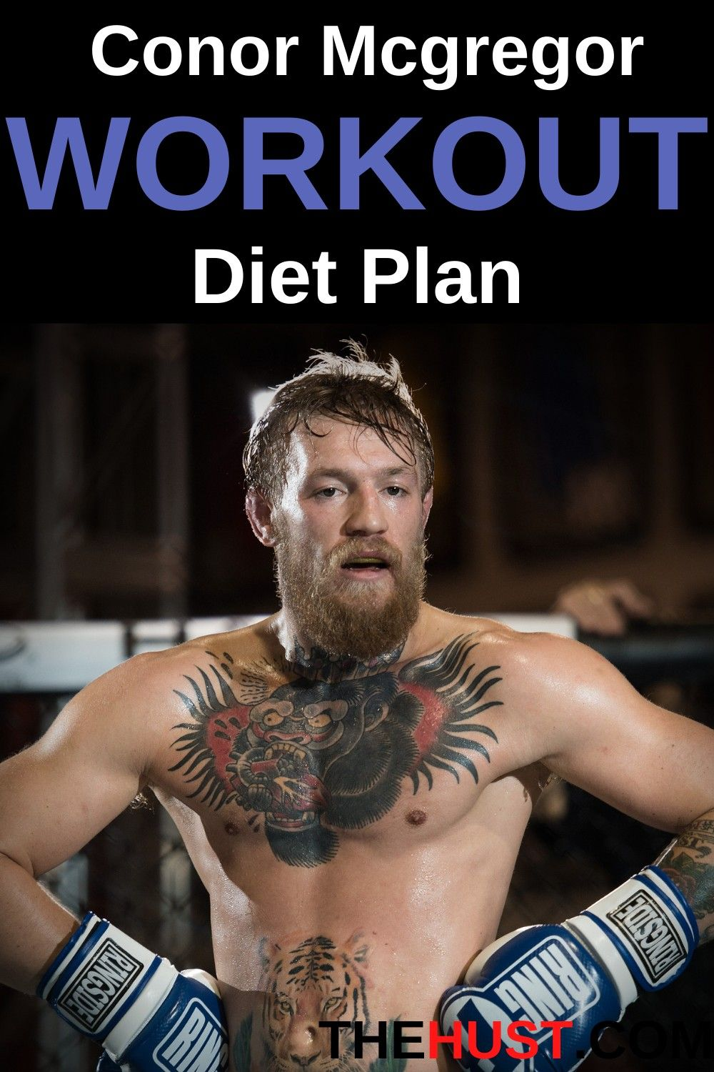 Conor Mcgregor Complete Workout And Diet Plan In 2021 Workout Diet Plan Men S Health Fitness Endurance Workout