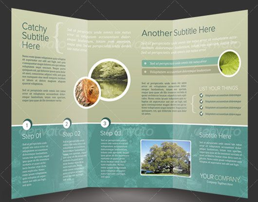 High Quality Brochure Design Templates  Tri Fold Brochure