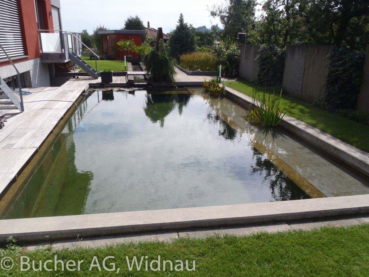 Pflanzencenter  Bucher Pflanzencenter - Gartenbau :: Naturpools | Baignade ...