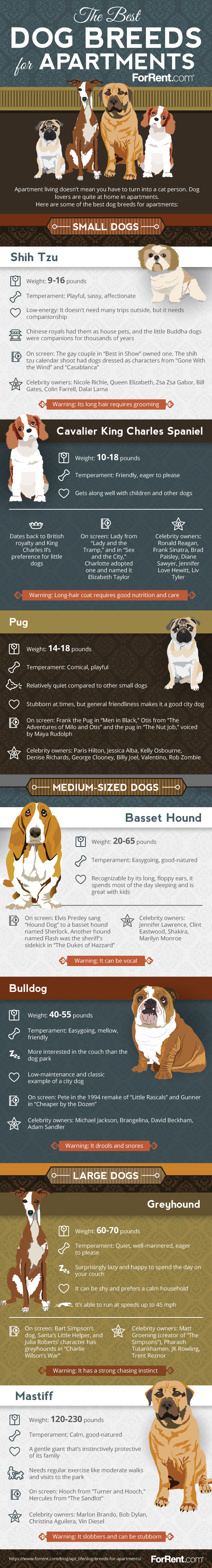 Apartment Living Choosing The Right Dog Breed With Images Apartment Dogs Apartment Dogs Breeds Best Dog Breeds