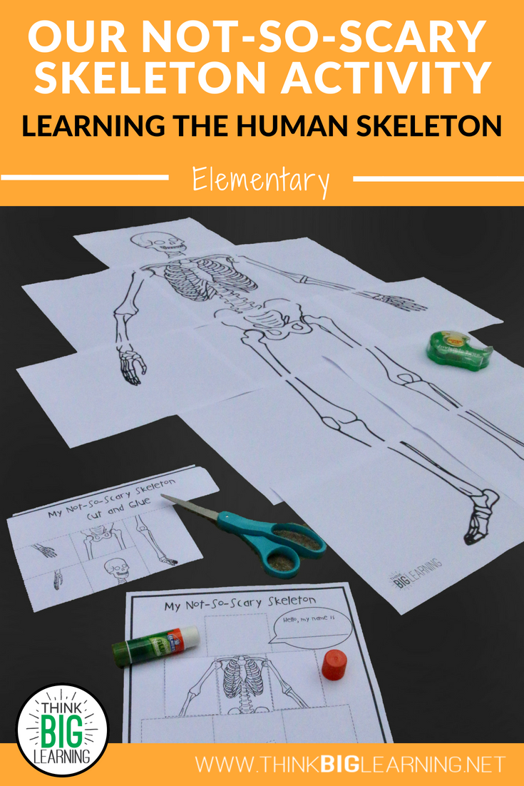 Our Not So Scary Skeleton Activity Active Learning Resources