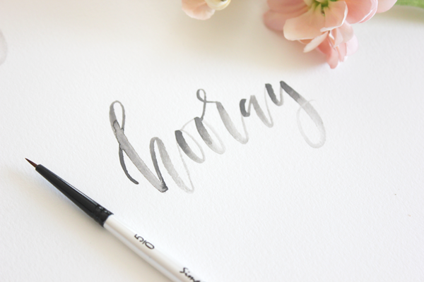 Midnight silhouette calligraphy fonts modern