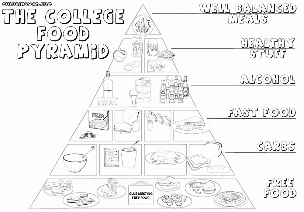 Food Pyramid Coloring Page Fresh The Food Pyramid Is Interesting