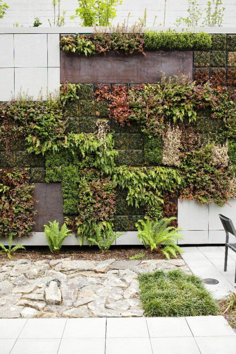 Urban wall gardening - Vertical Garden Wall Hotel Modera Portland Oregon