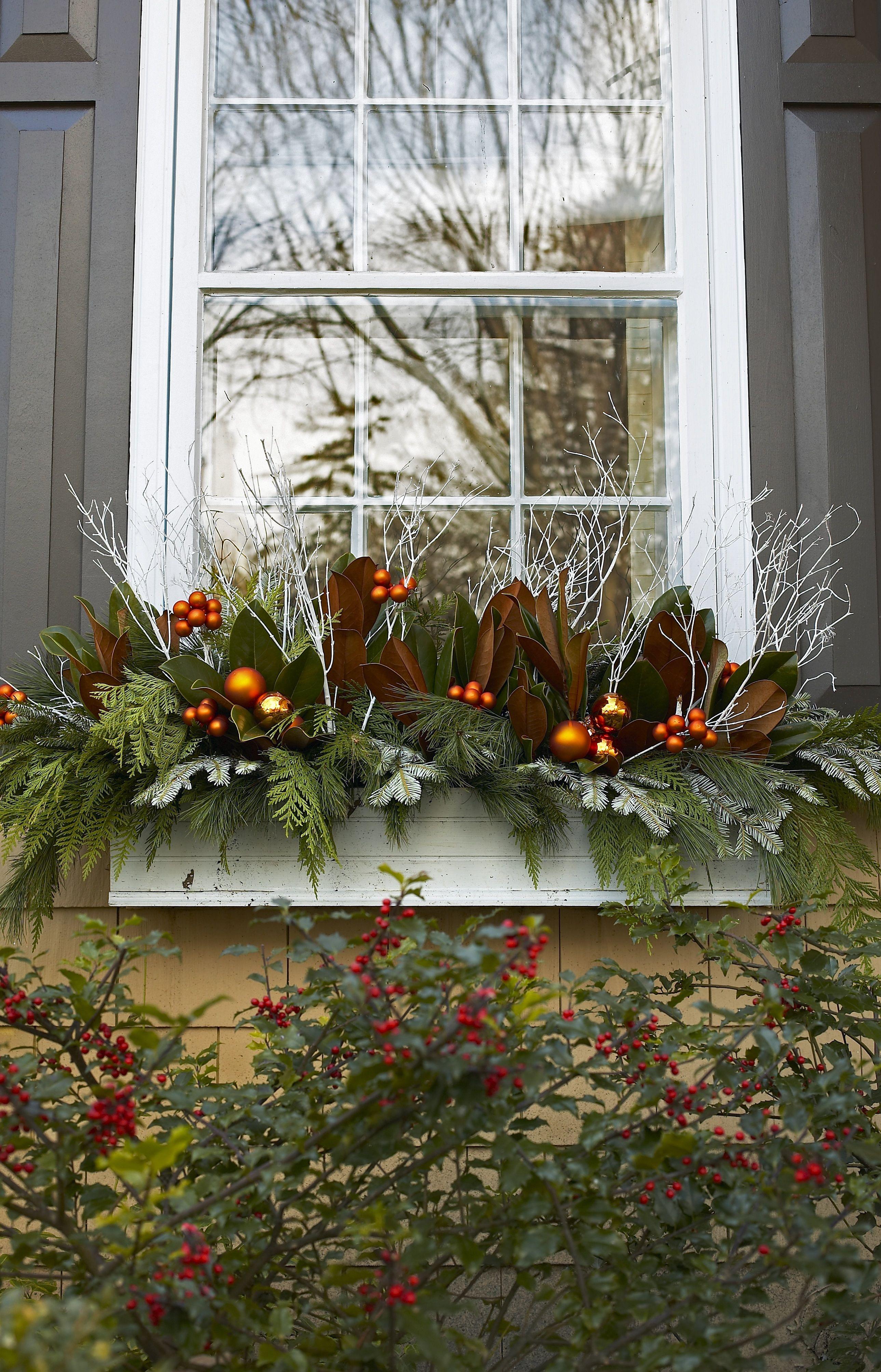 Winter planters Jacqueline Glass and Associates ...