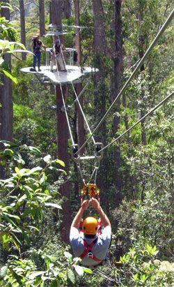 b27c30ef93a10f3214a59e68c54a2a64 - Great Aussie Bush Camp Tea Gardens Activities