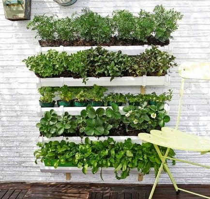 Huerto vertical en la pared huerto pinterest - Huerto vertical casero ...