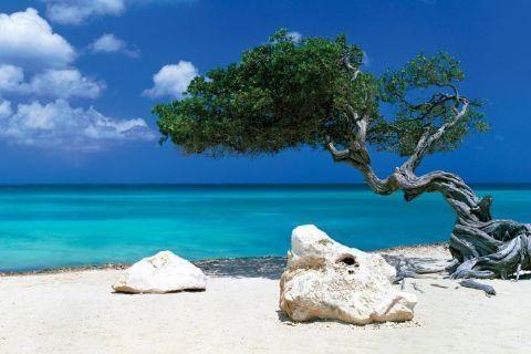 photo paysage ile paradisiaque