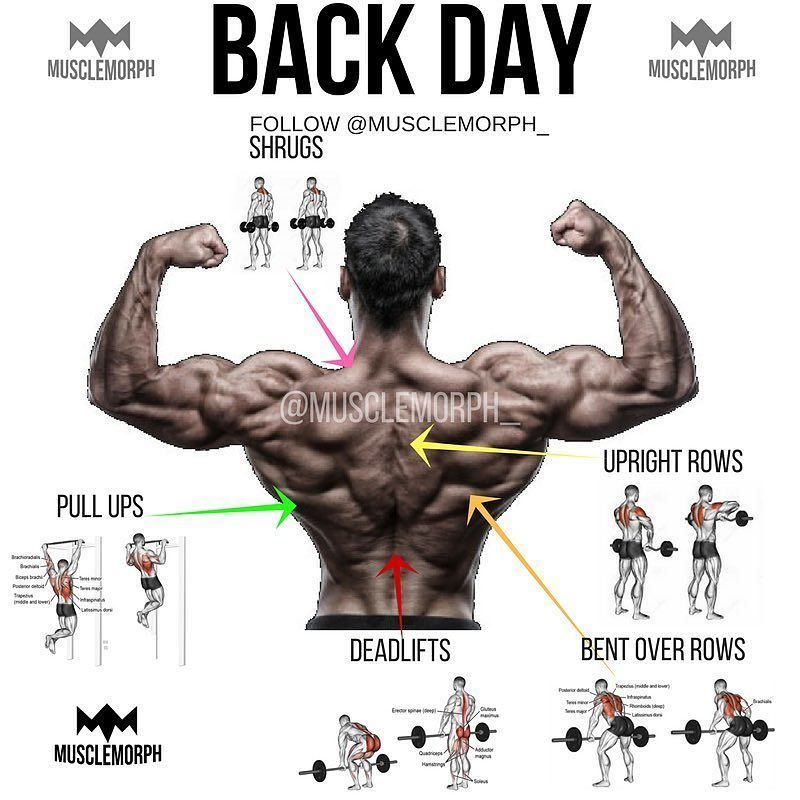 Who S Got Back Day Today Personally My Favorite Muscle Group Any Other Awesome Exercises For Ba Bodybuilding Workouts Workout Plan Weight Training Workouts