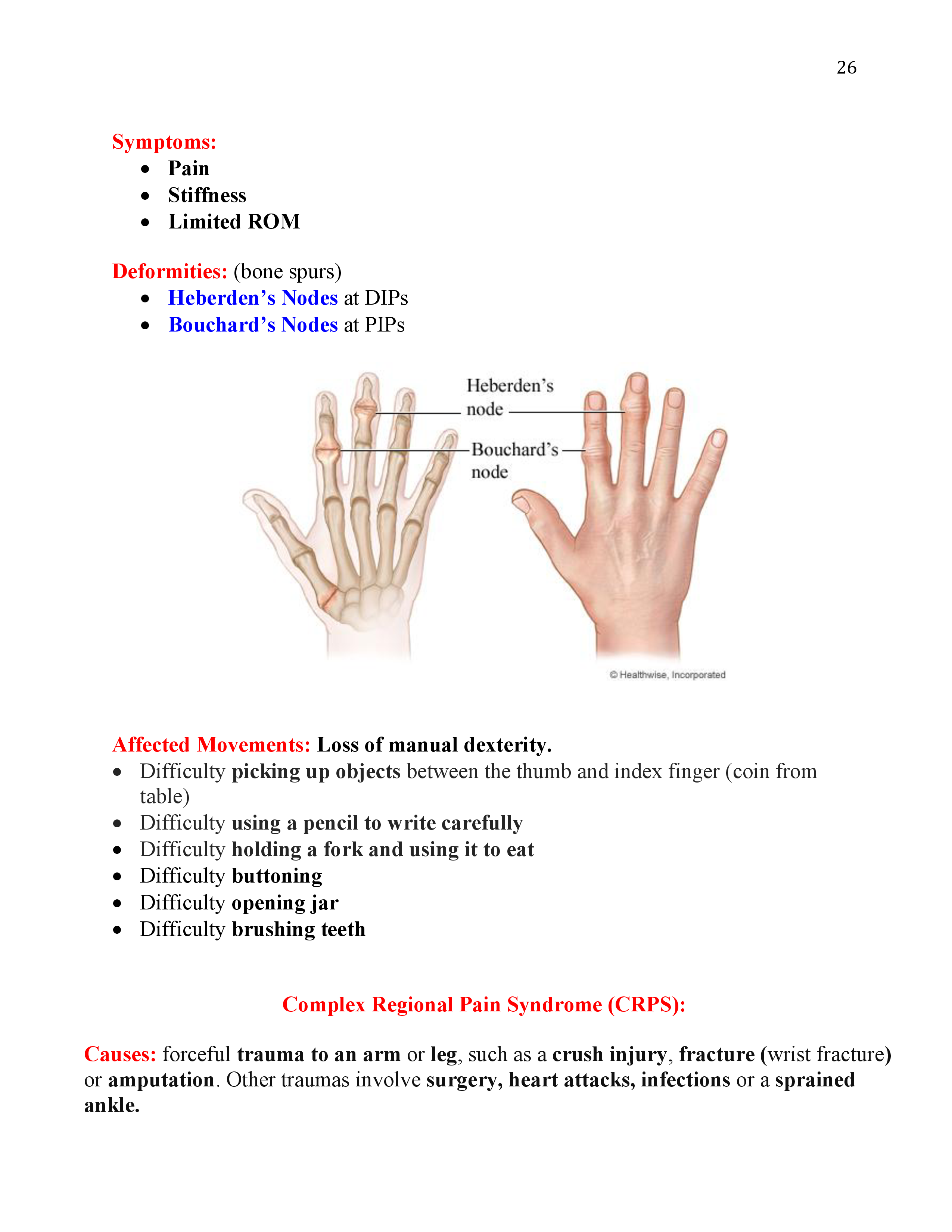 Peripheral Nerve Injuries and ADLs Affected | Occupational Therapy ...