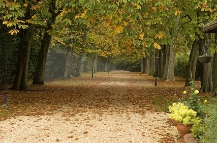 How To Bind A Driveway With Loose Stones Gravel Driveway