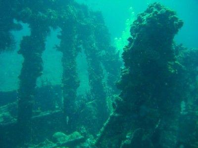 Rhone Wreck British Virgin Islands (c) Anja Knorr