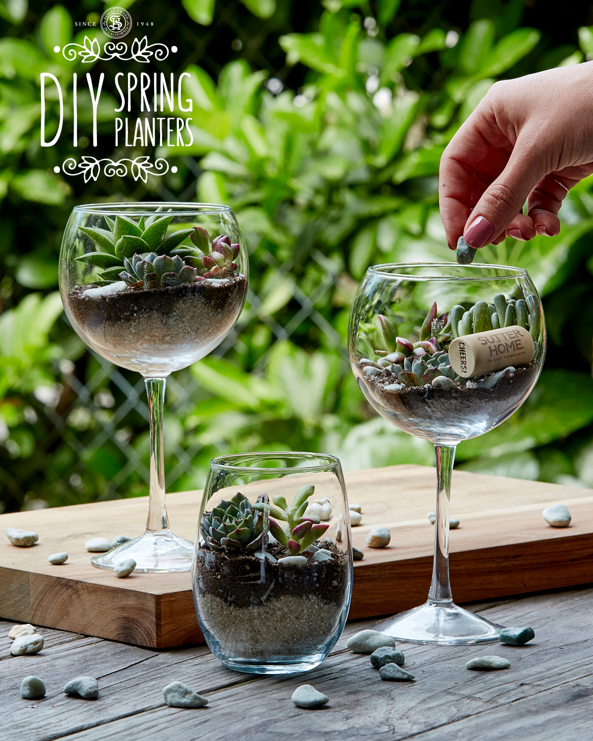 Photo of Plant spring succulents with this DIY wine glass planter – #the …