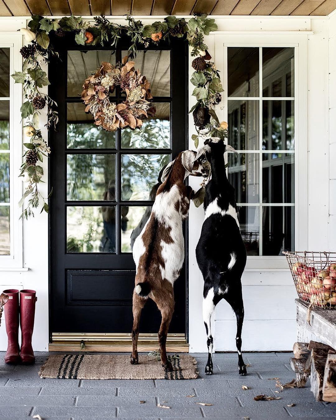 Doors Farmhouse Front PorchesPorch DecoratingDecorating
