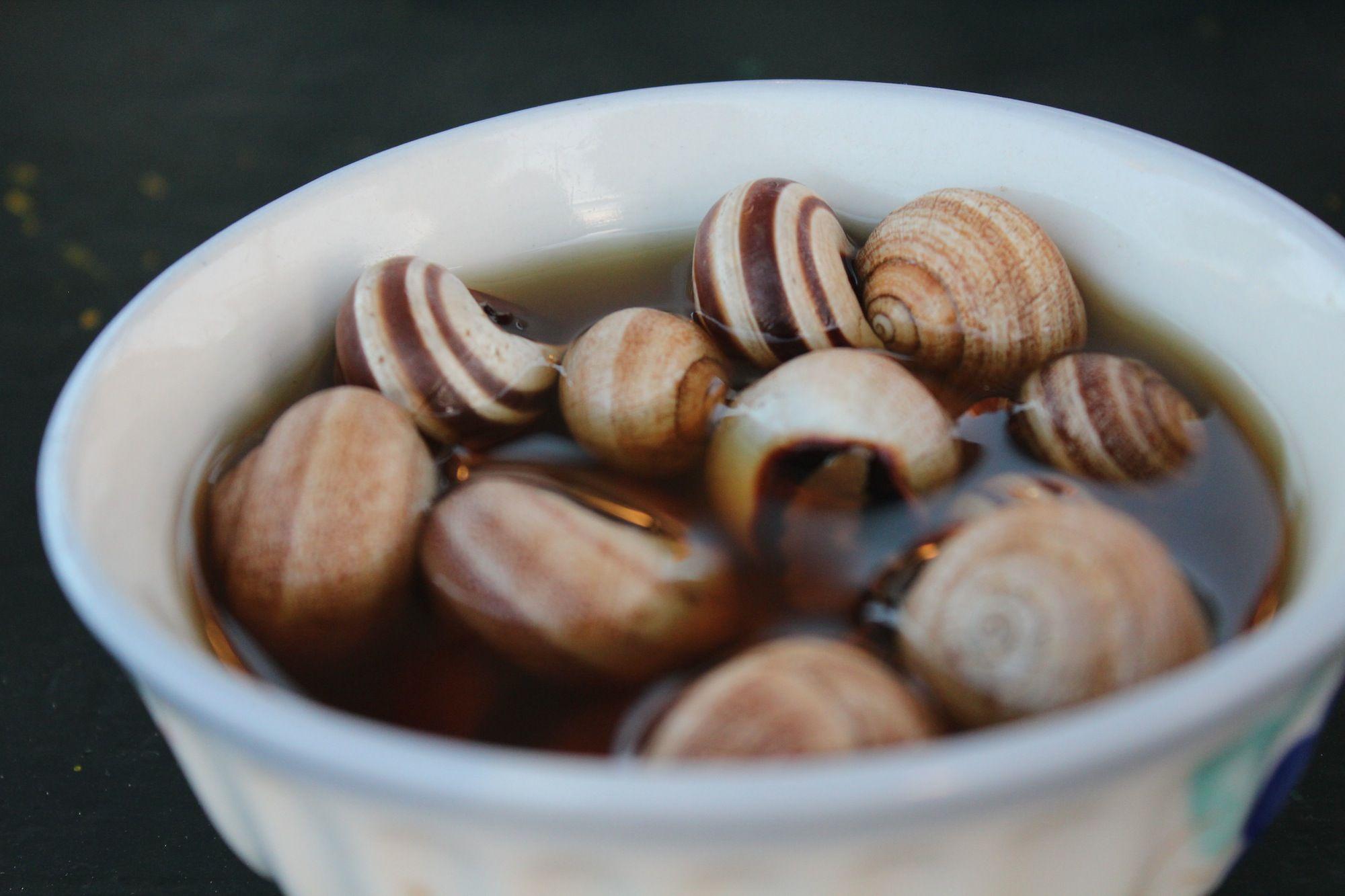 Snails in jamma el fna morocco escargot caracoles snails snails in jamma el fna morocco forumfinder Images