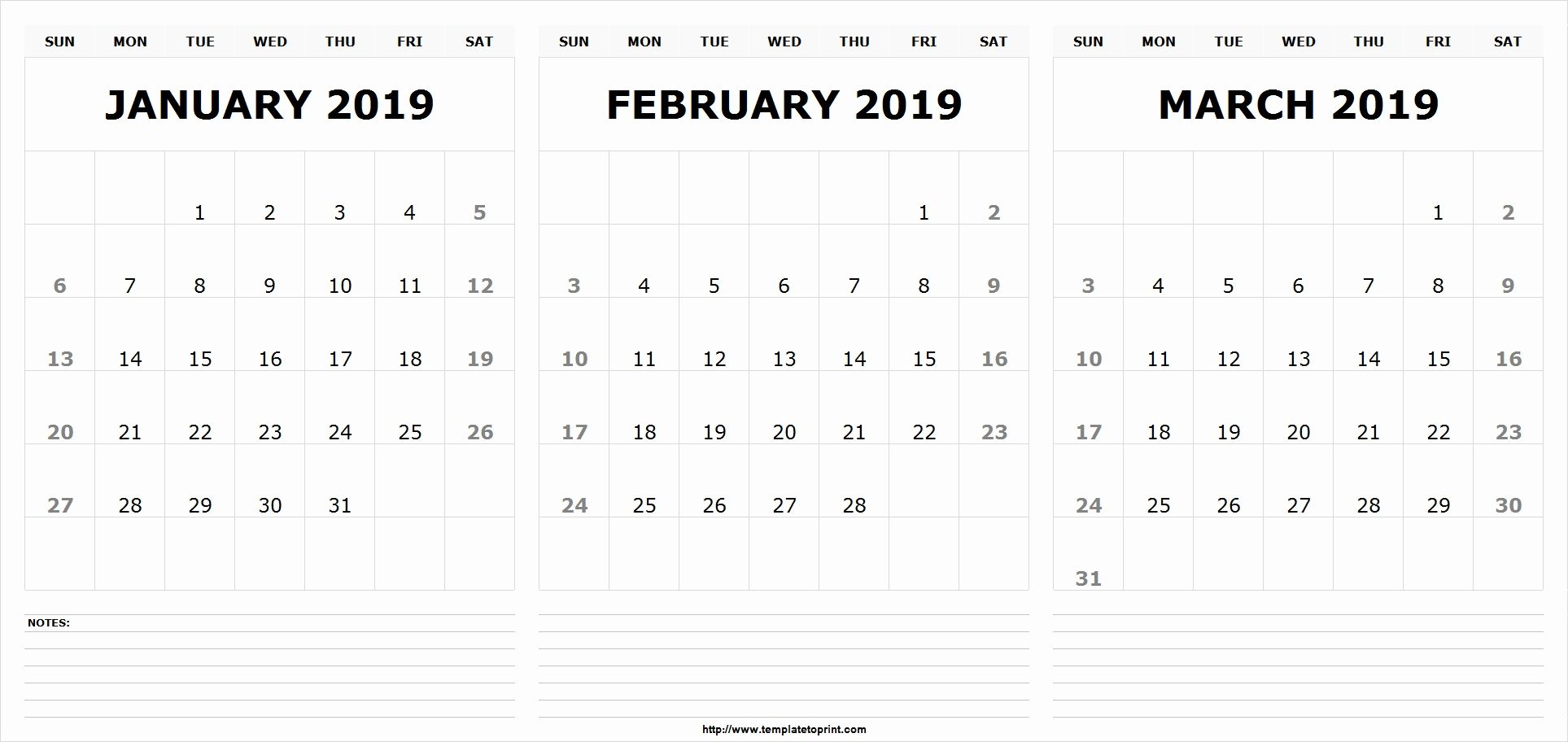 Jan Feb March 2019 Calendar Template 555 December January