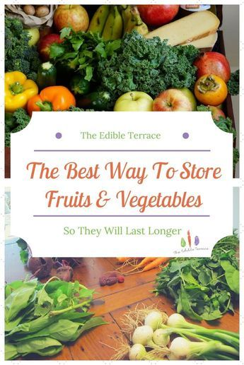 The Best Way to Store Fruits&Vegetables So They Last ...