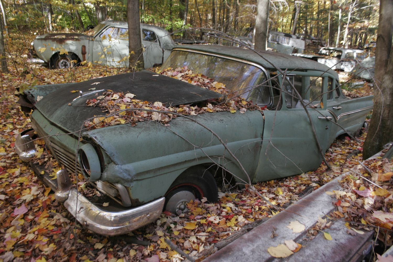 abandoned+vehicles | TV show on languishing collections given go ...