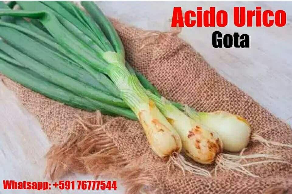 acido urico aves y reptiles como aliviar la gota en el pie lista de alimentos permitidos para acido urico