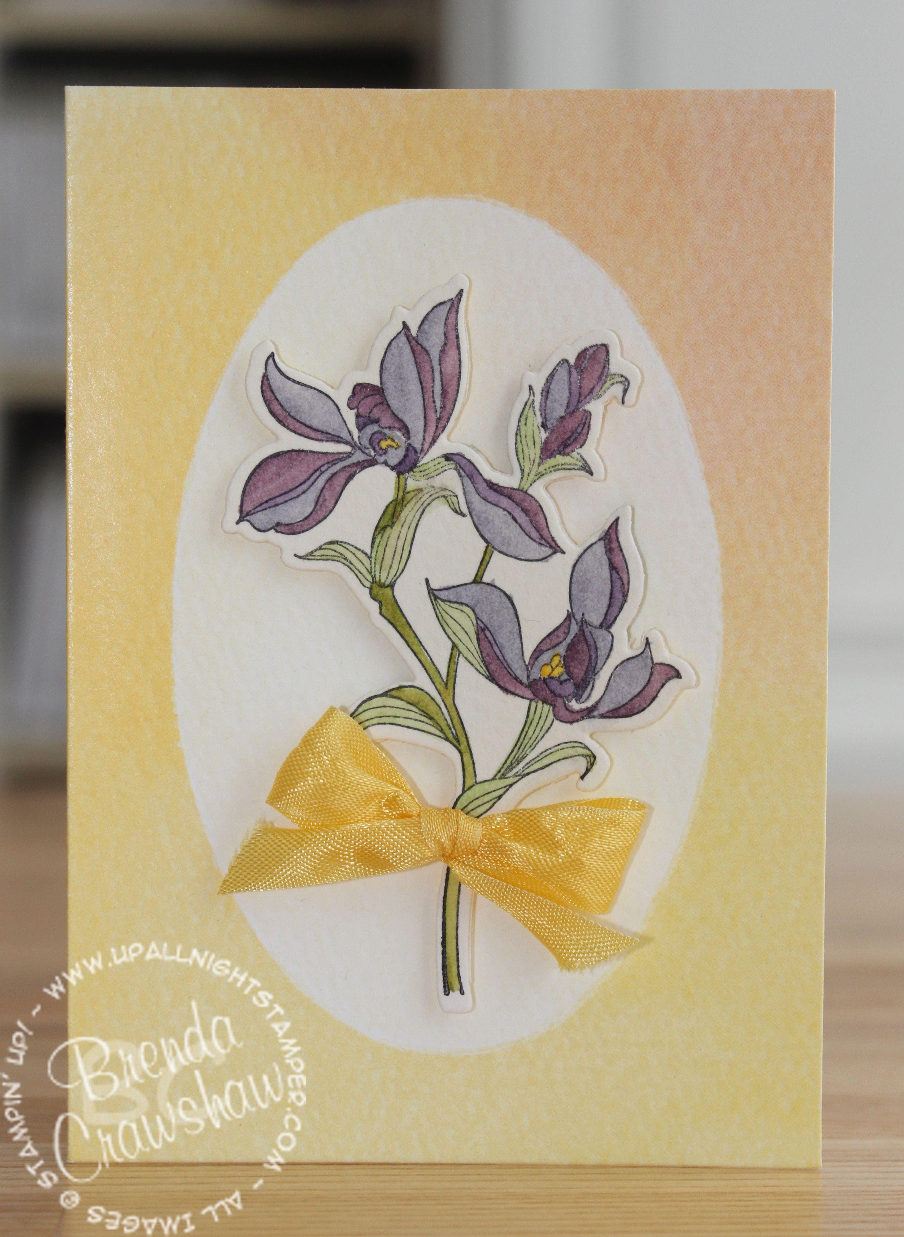 Watercolor Wonder Note Cards Meets Backyard Basics