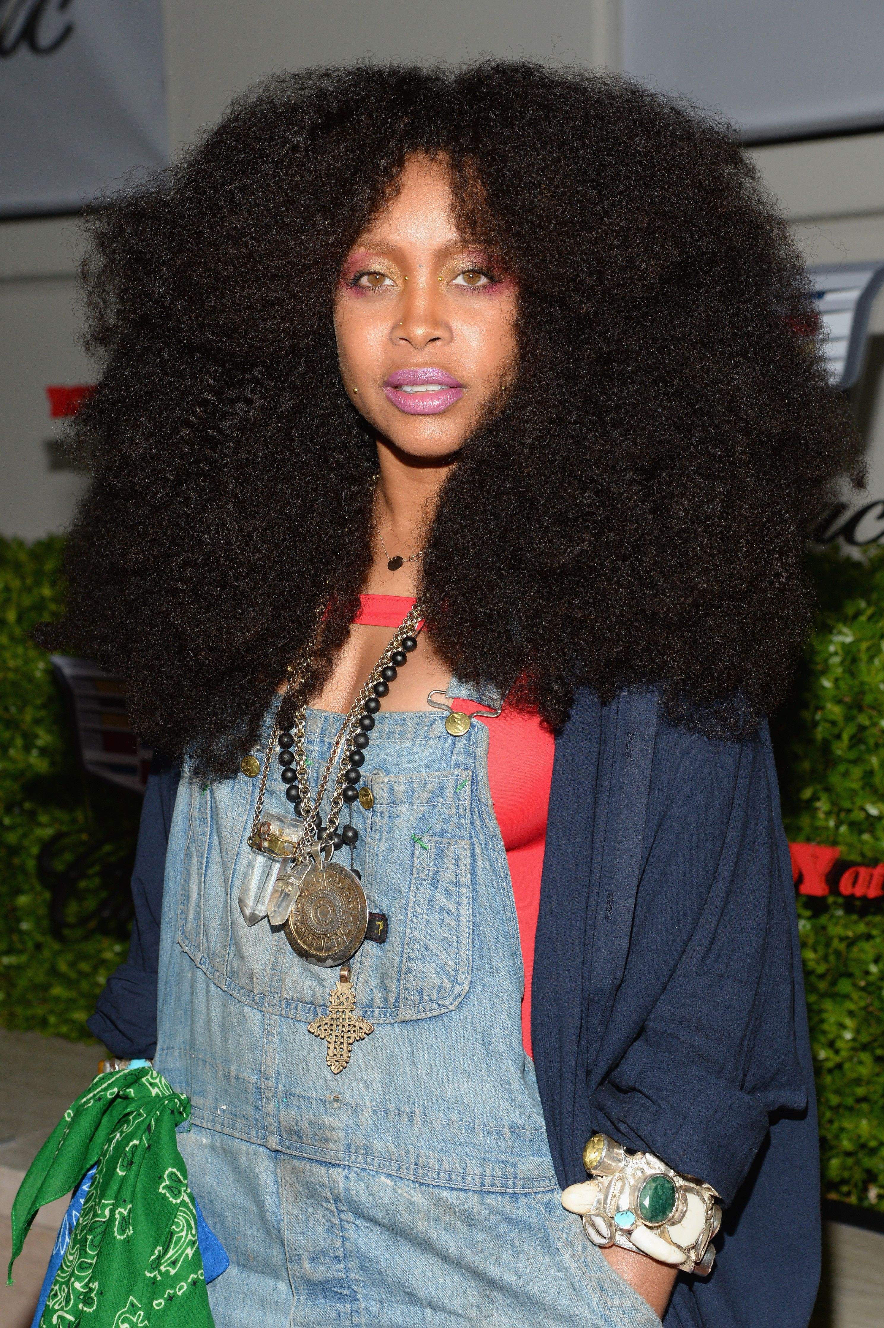 Erykah Badu Afro Kinky Curly Natural Hair Extensions Style Ideas