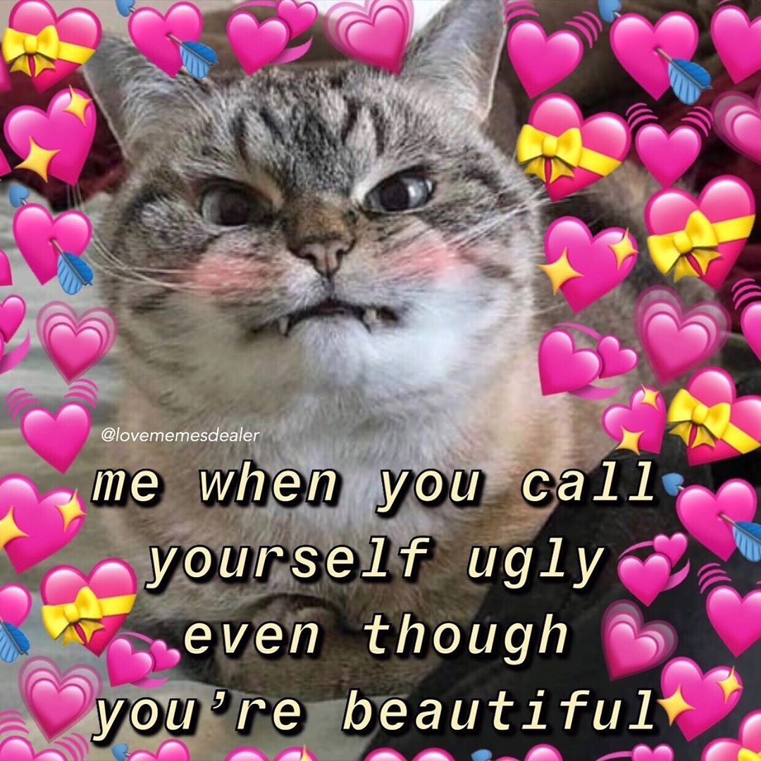 Wooohoooo 9k Thank You Guys Follow Lovememesdealer For More Mood Cutememe Lovememes Wholesom Cute Memes Cute Love Memes Love You Meme