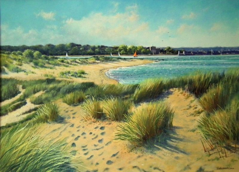 Dunes at Shell Bay