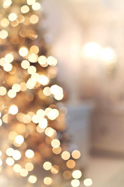 Christmas Tree Insp Christmas Tree Wallpaper Hanging Christmas Lights Fairy Lights In Trees