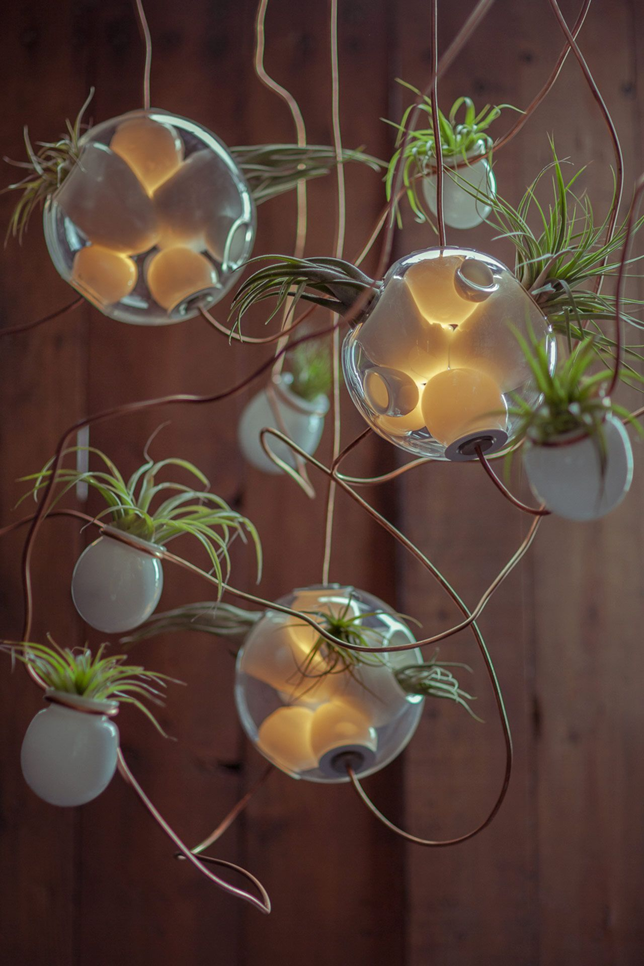 Lighting By The Super Talented Omer Arbel Of Bocci