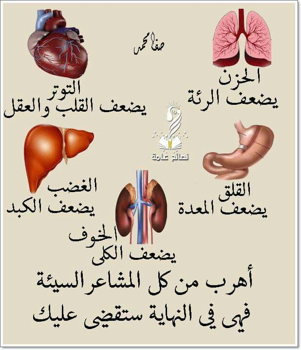 Pin By Amir Refaay On Nice Collection Health Facts Food Health Fitness Nutrition Health And Fitness Expo