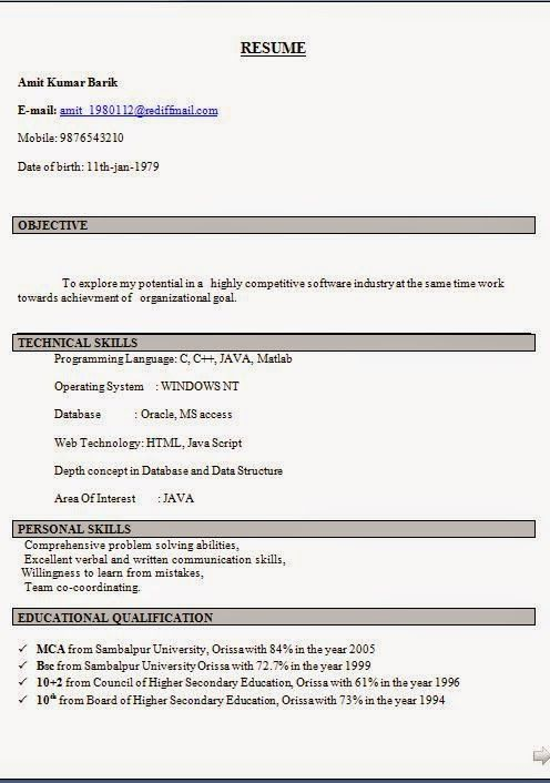 Mechanic Resume Examples Sample Template Example Of ExcellentCV   Examples  Of Communication Skills For Resume  Communication Skills Resume Examples