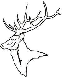 57209857742472528 also Deer Skull Decal Drop Tine likewise Color Pages moreover 423619908675539795 together with Snow Camo Decals For Trucks. on whitetail deer stencils