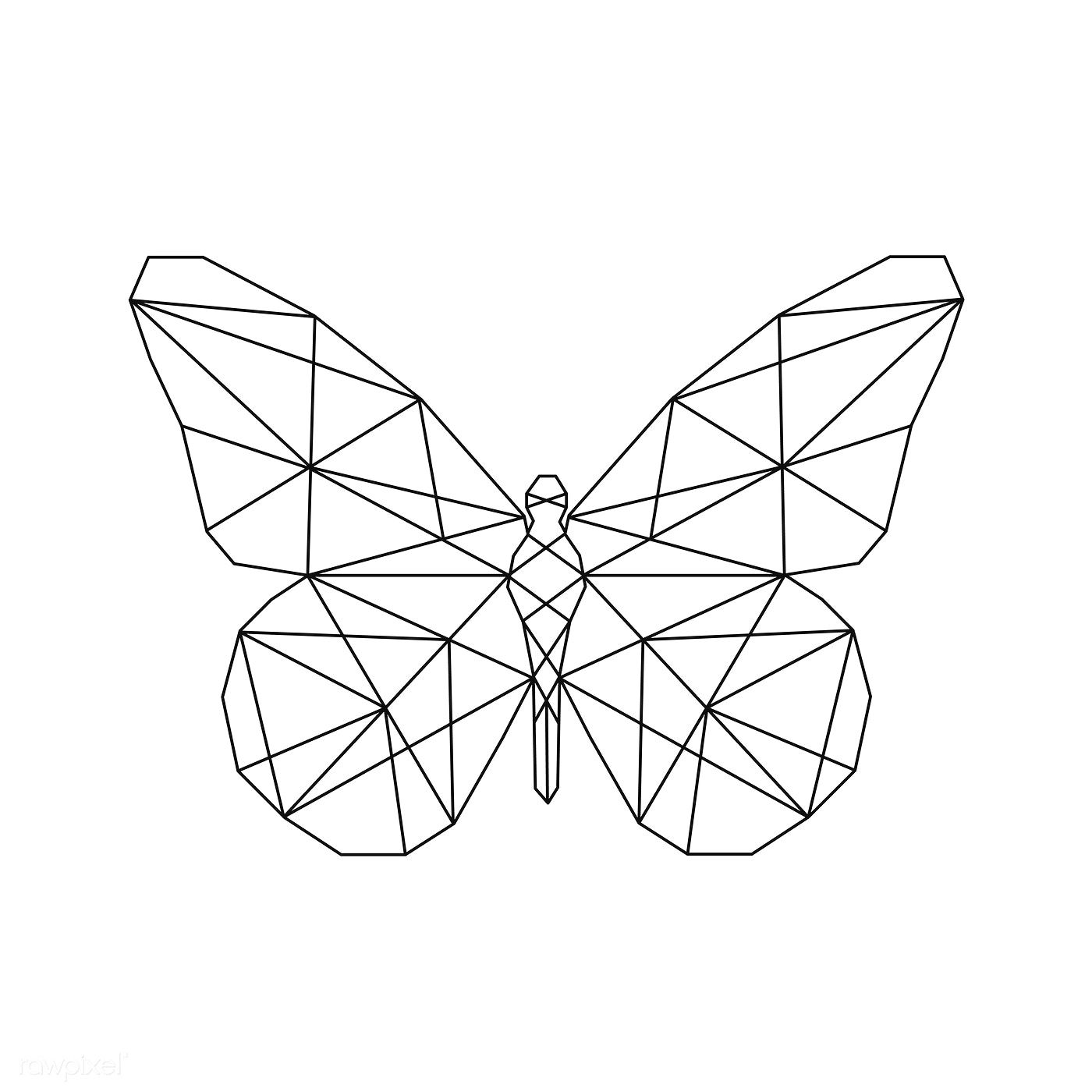 Photo of Download premium vector of Linear illustration of a butterfly 518165