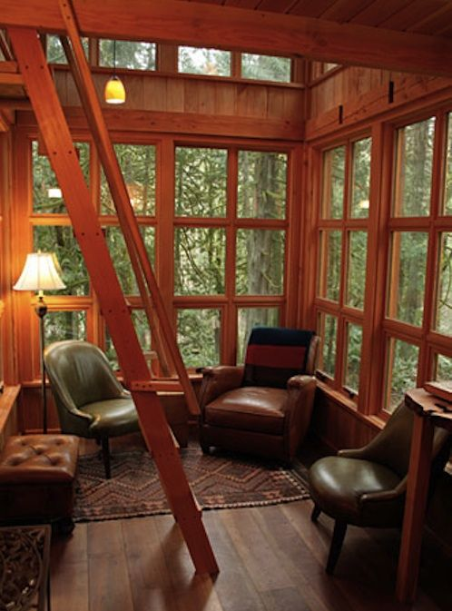Library in a tree house.