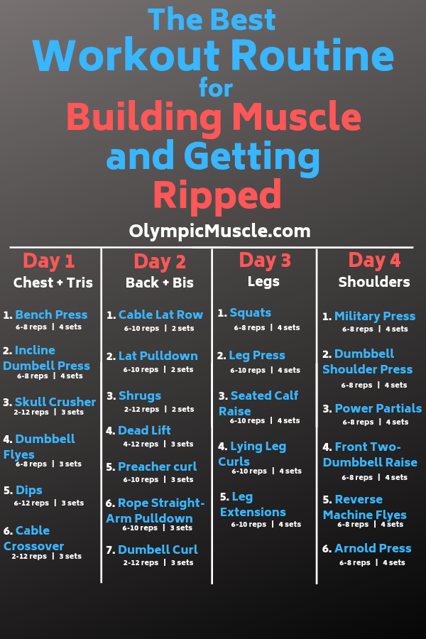 Photo of Beste Trainingsroutine zum Muskelaufbau #gewichtstraining Folgen Sie diesem 4-tägigen Worko …