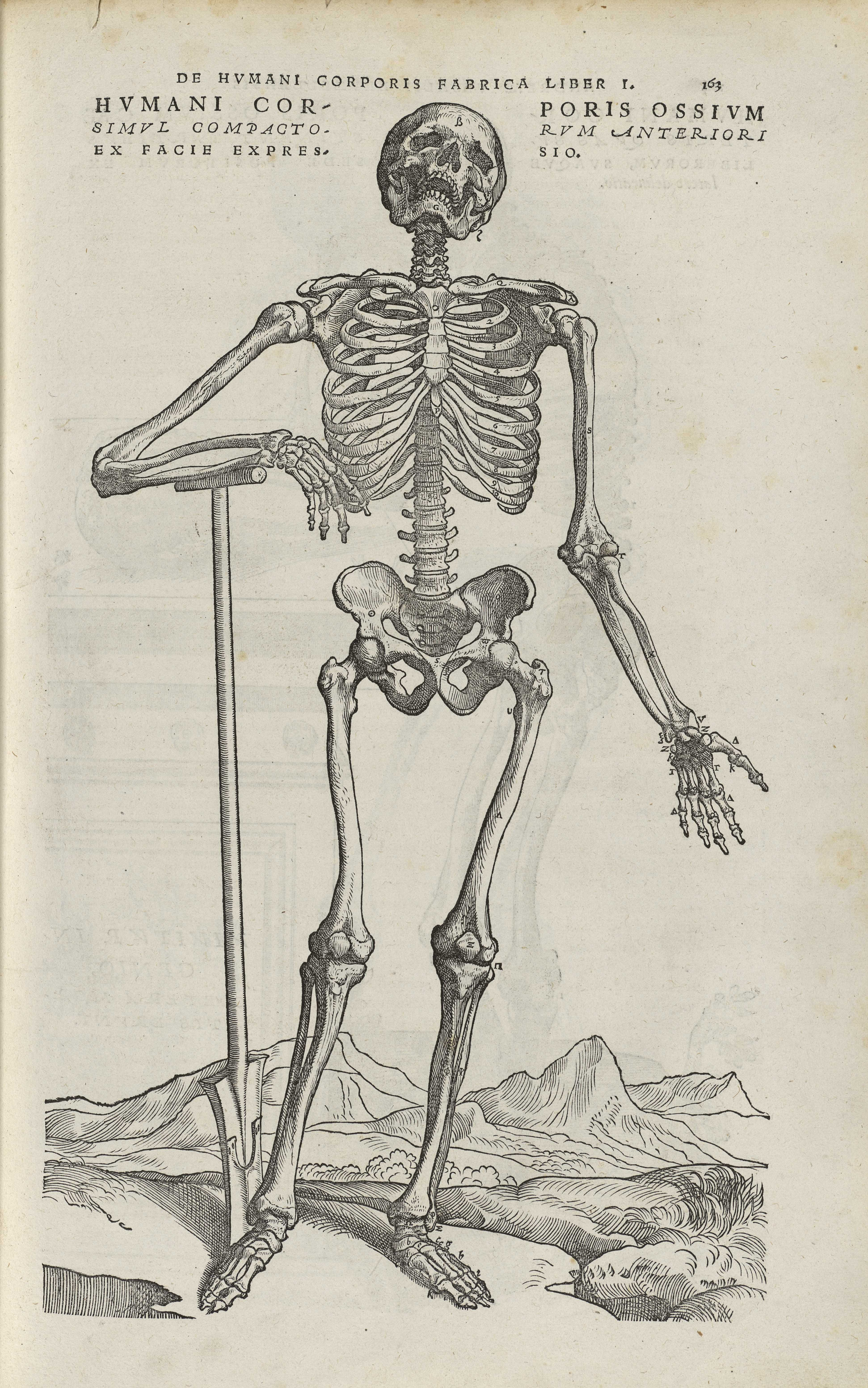 On a rétréci nos usagers ! -   Medieval, Medicina y Tatuajes