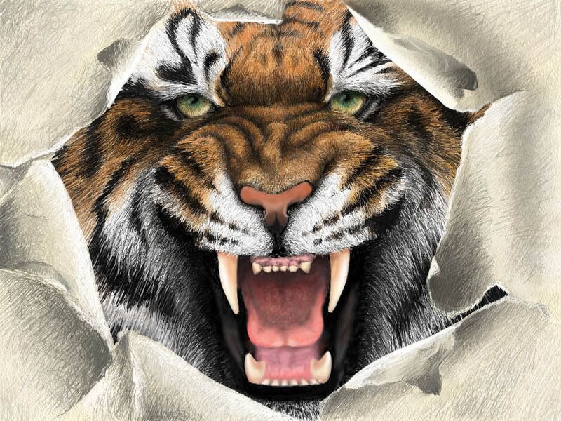 Angry Animals Google Search: Fierce Angry Tiger - Google Search