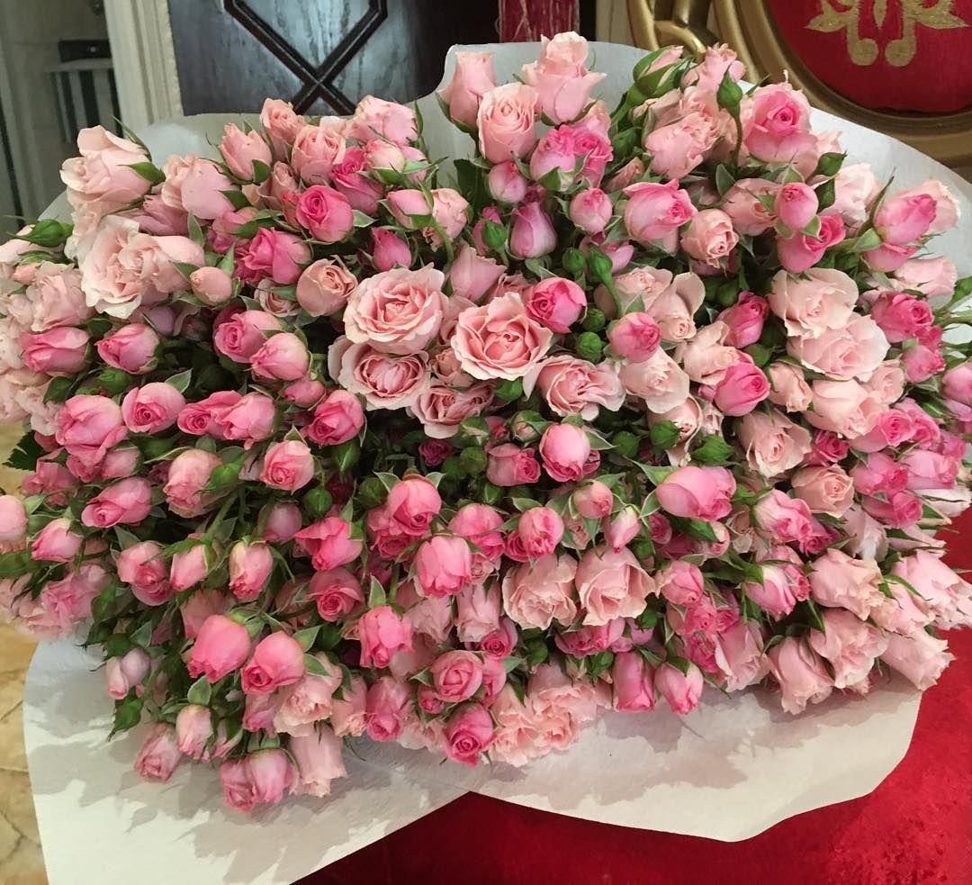 Pinterest / / KJam0630 Красивые цветы, Цветы, Букет цветов