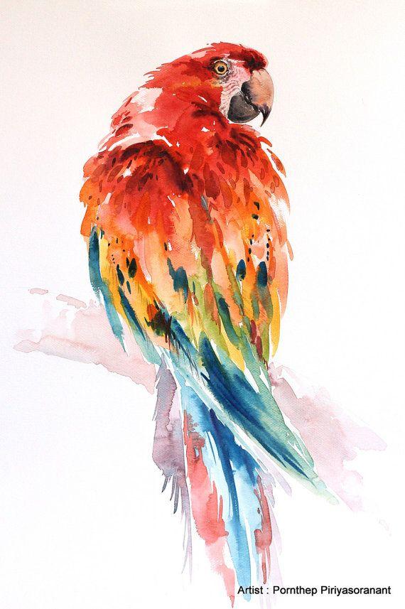 Uccello Del Pappagallo Ara Pittura Arte Dell Animali Acquarello