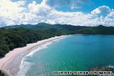 New Chums Beach Coromandel Peninsula Is One Of The Last Undeveloped Beaches In Zealand Head To Northern End Whangapoua Follow Whanapoua