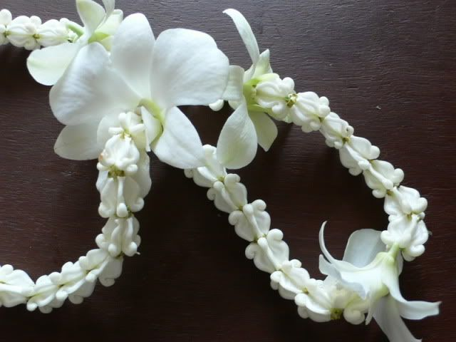 Photo By Aa Soontaravarapas Floral Accessories Floral White Orchids
