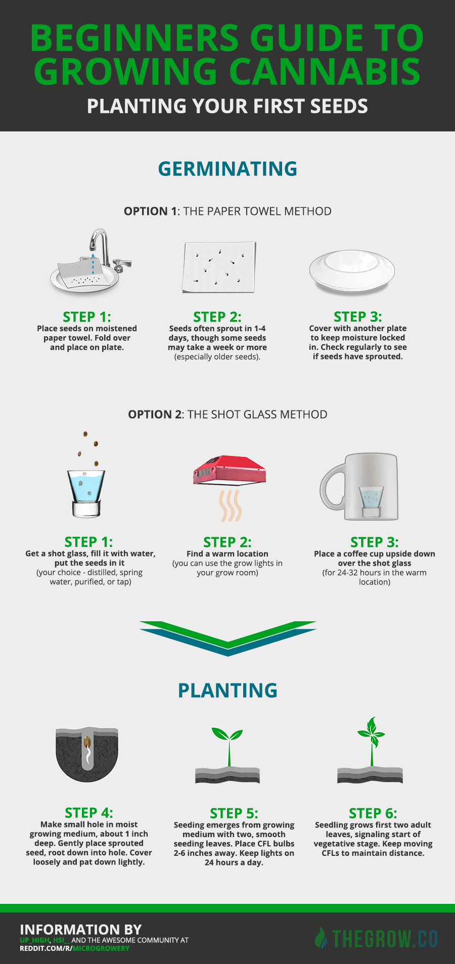 Planting your first cannabis seeds infographic also cannaacademy by rh pinterest